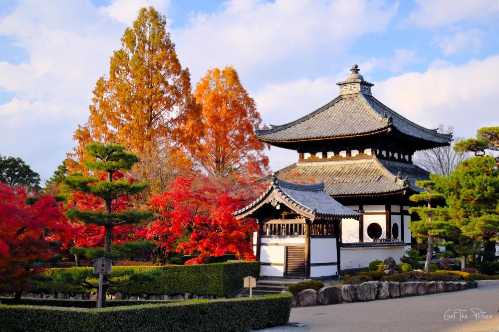 COVID Kyoto - Tofukuji