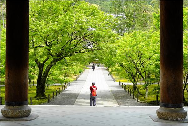 COVID Kyoto, Nanzenji