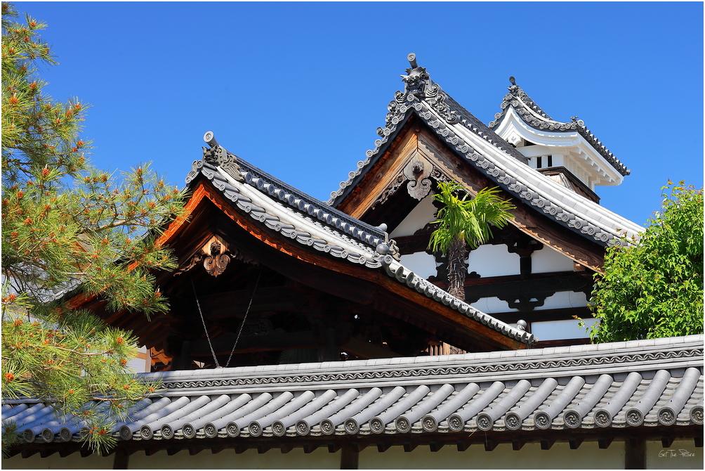 beautiful rooflines at Myoshinji (妙心寺)