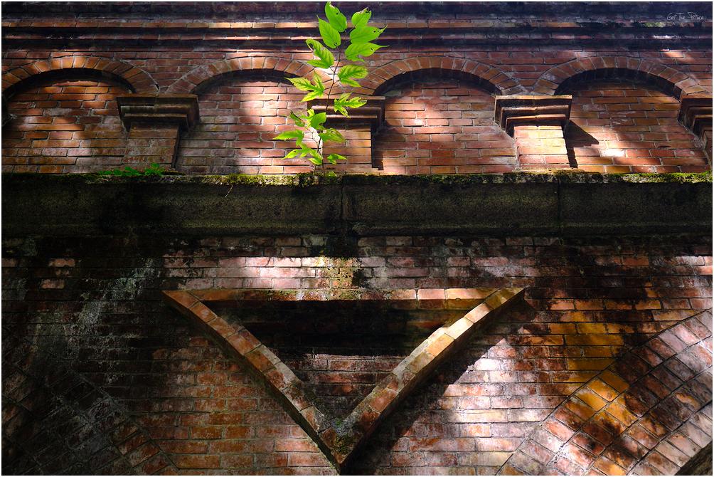 The famous agueduct at Nanzen-ji
