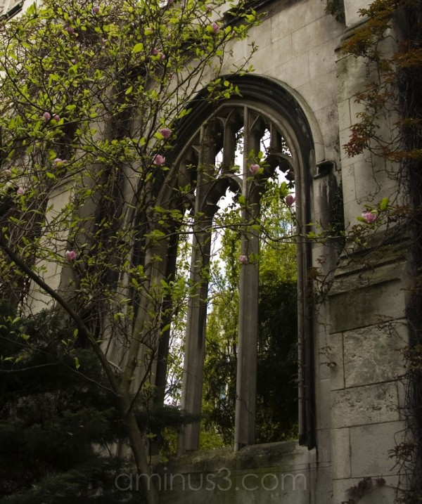 Church of St Dunstan in the East (Ruins)