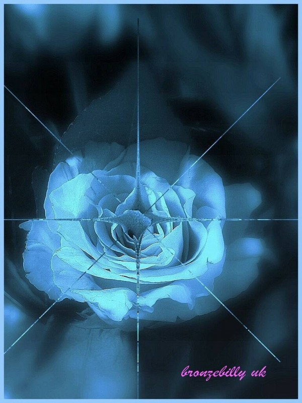 rose ice blue