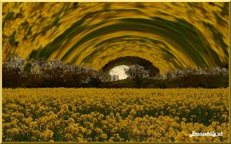 gold field abstract