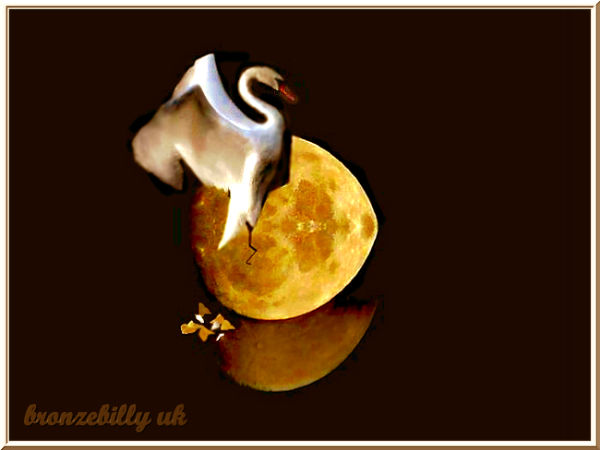 moon swan birth bronzebilly