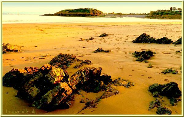 beach favourite place bronzebilly