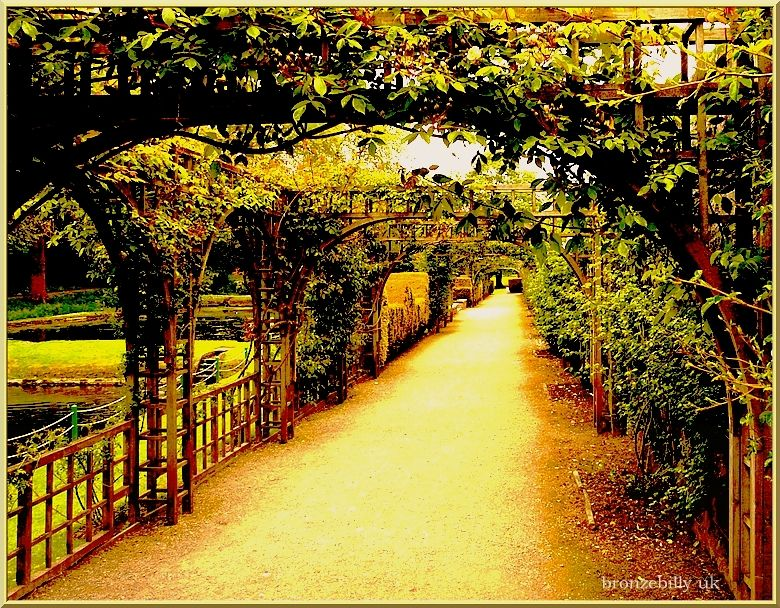 garden path st fagans cardiff bronzebilly