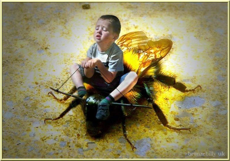 bumble bee jockey pollen  photoshop manipulation b