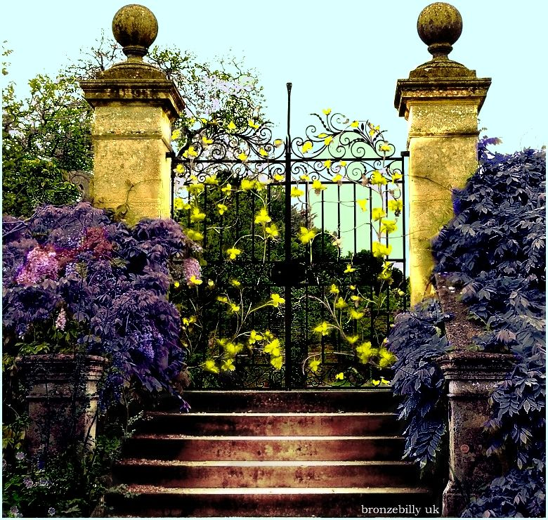 gates colour filters ornate bronzebilly