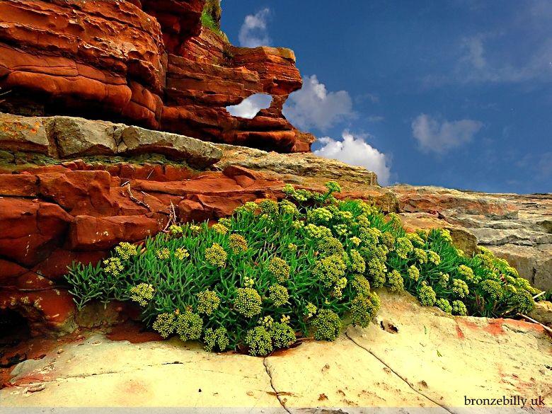 sky cliffs landscape manipulation bronzebilly