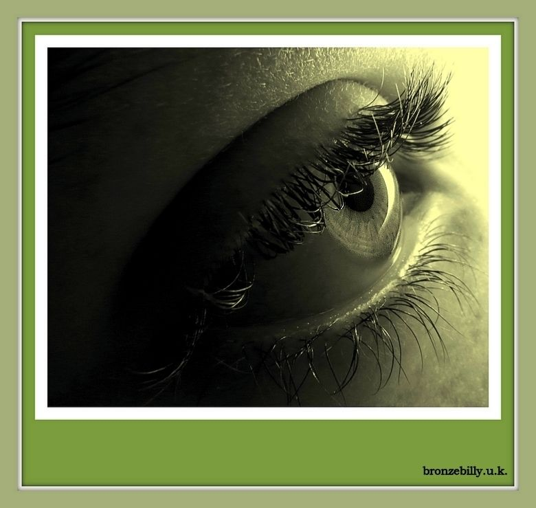 macro eye light frame mono bronzebilly
