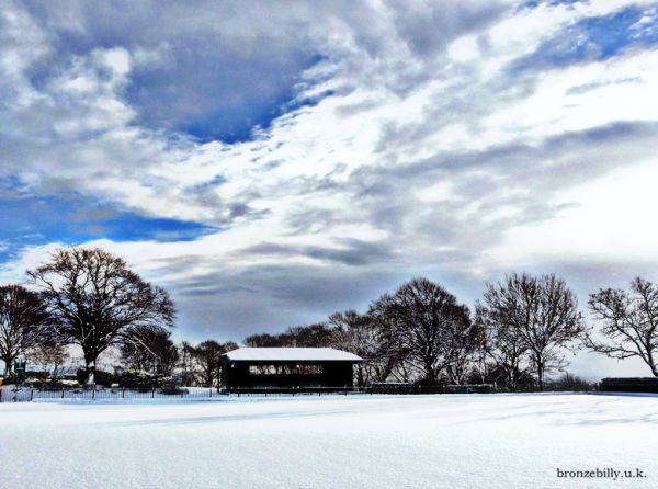 snow bowling park trees hdr bronzebilly