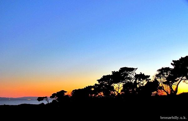 sunset home sky trees bronzebilly