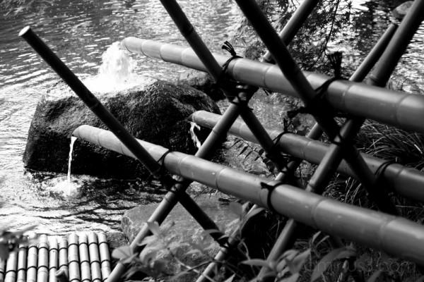 Bamboo plumbing