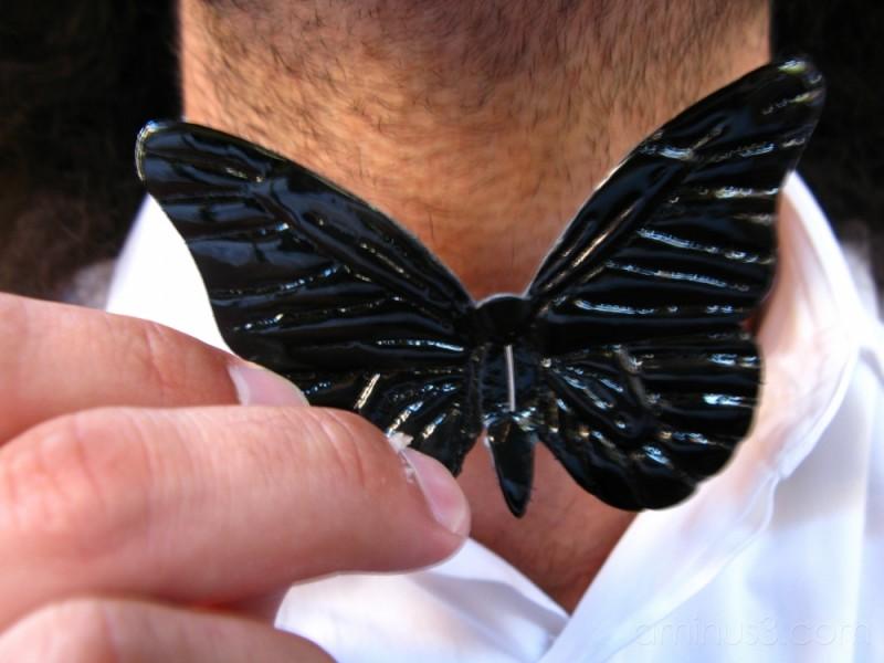 ...butterfly...