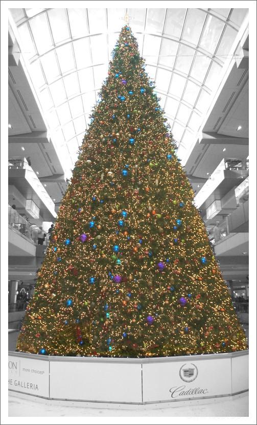 One Big Christmas Tree