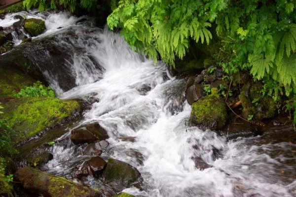 Water Creek II