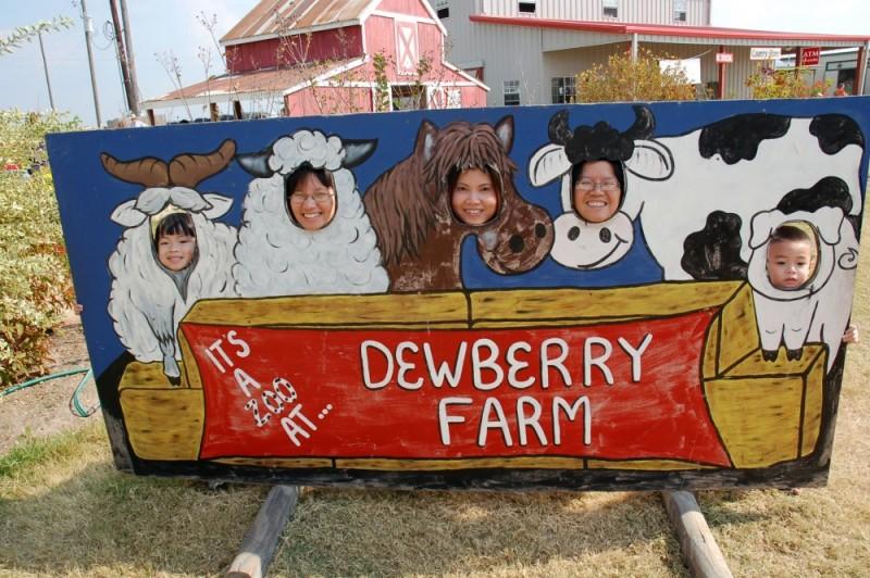 Animals @ Dewberry Farm