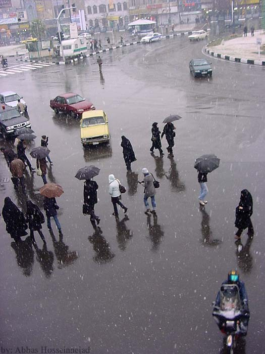 A snowy day In tehran