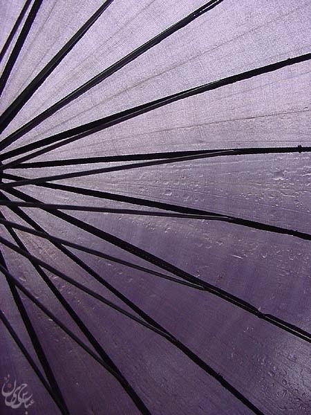 A Rainy day In Tehran