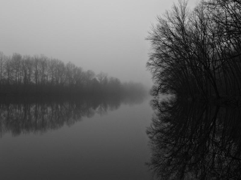 Hazy reflections of life