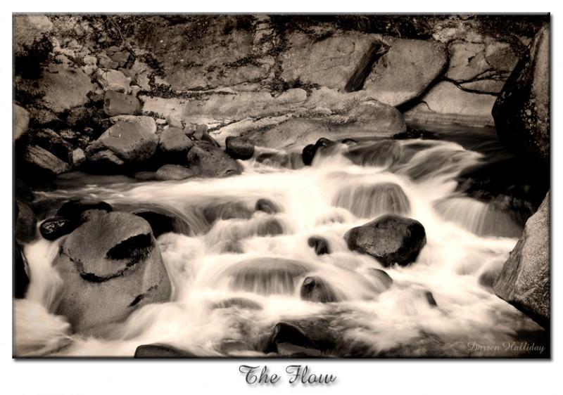The Flow Darren Halliday Japan