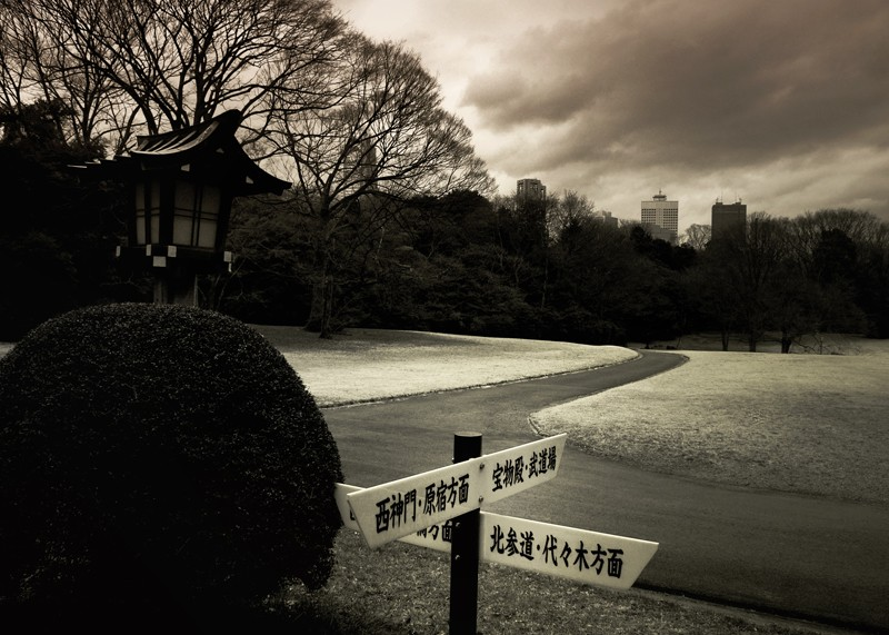Which Way Meiji Tokyo Darren Halliday
