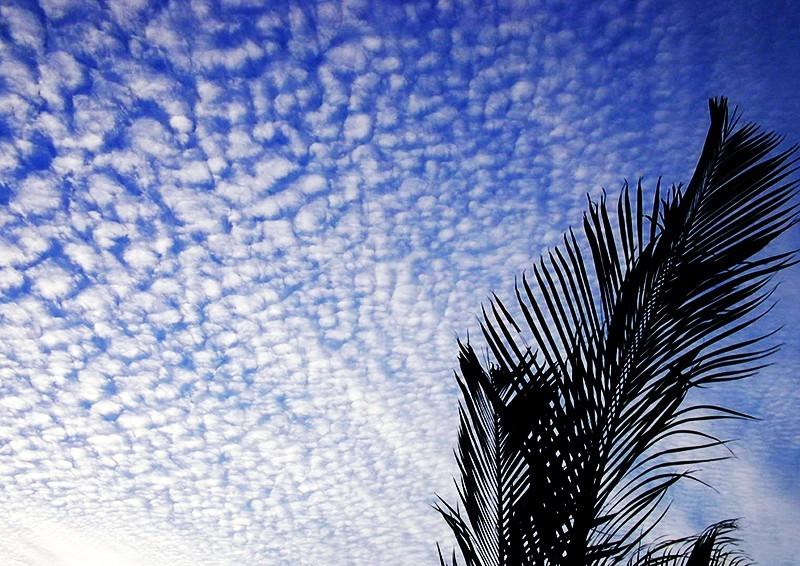 Cairns Australia Darren Halliday Photography