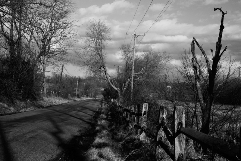 Country Lane in Winter Gray
