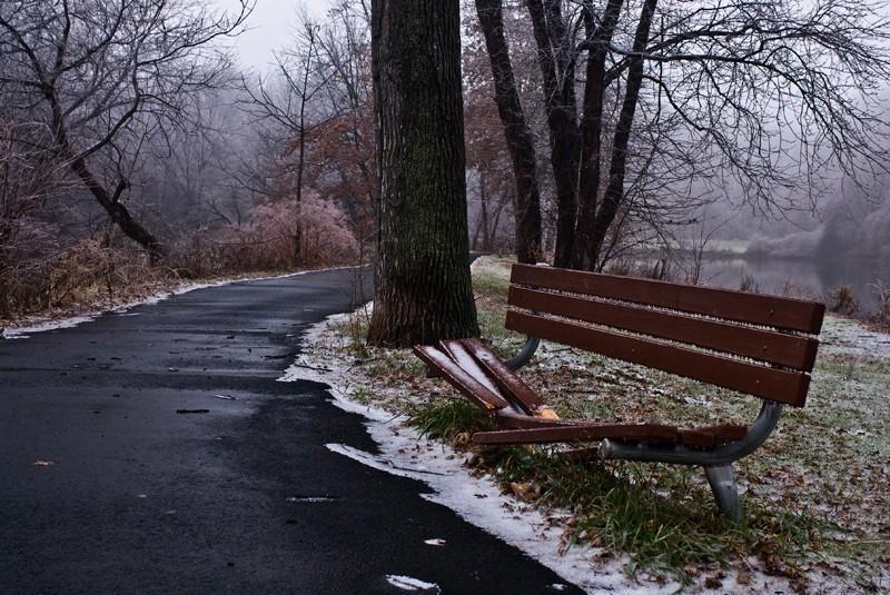 Broken Park Bench