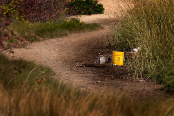 Yellow bucket and fishing gear in Sandy Hook