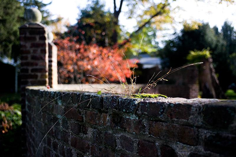 Brick Garden wall in Princeton