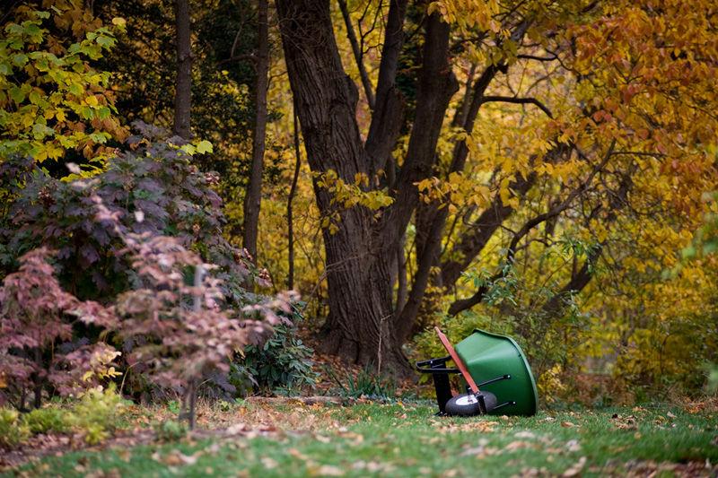 Rutgers Gardens Wheel Barrow