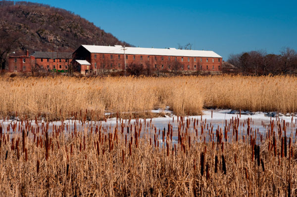 Iona Island Marsh, Stony Point, Rockland County NY
