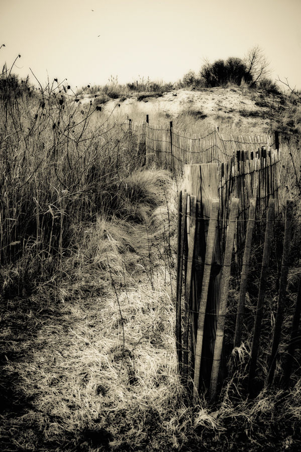 Keansburg New Jersey Dunes