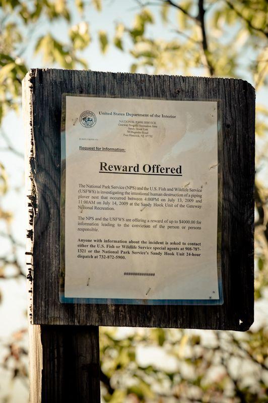 Reward sign in Sandy Hook