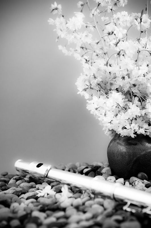 flute and flowers