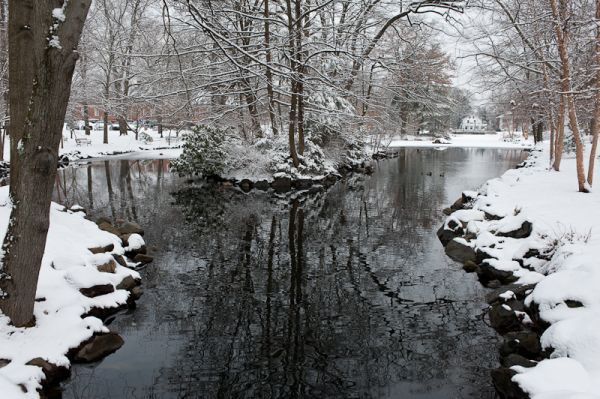 Mindowaskin Park in the Snow 4