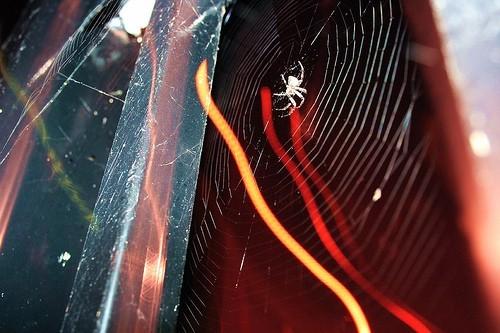 electric arachnid