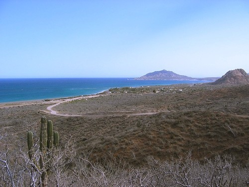 the road to Cabo Pulmo