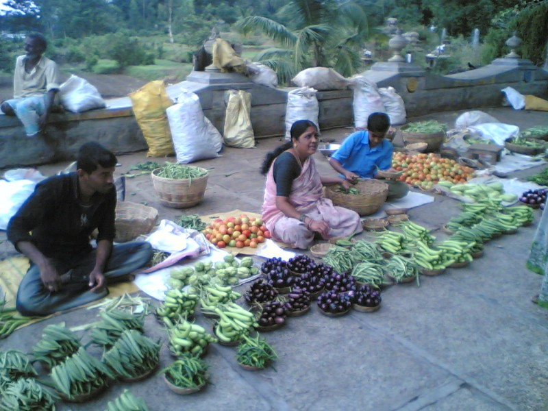 Vegetable Vendor