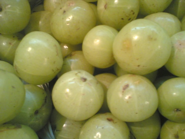 Mouth Watering Gooseberries