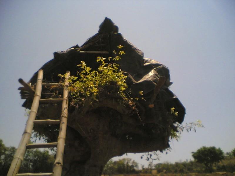 A small hut