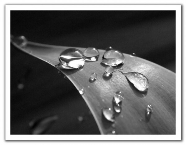 Droplets.