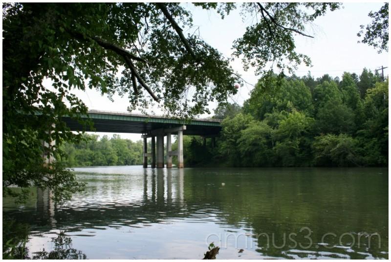 Bridge at the park
