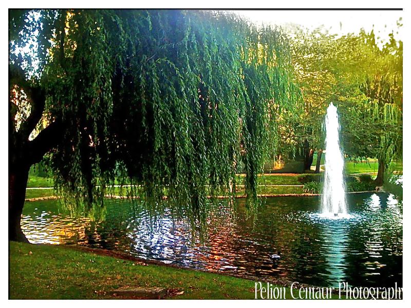 Fountain in Park in San Jose