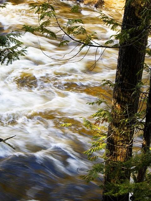 Rivière l'Assomption - Assomption River