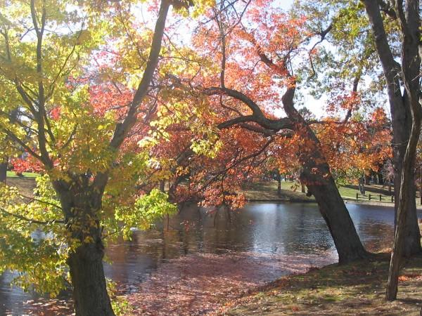 Spring Lake, NJ