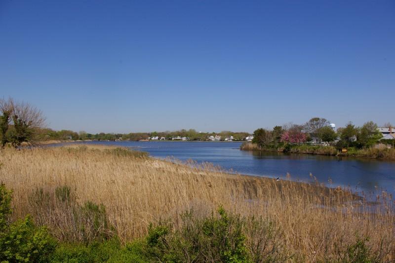 Wreck Pond