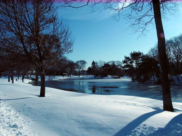 Winter in Spring Lake