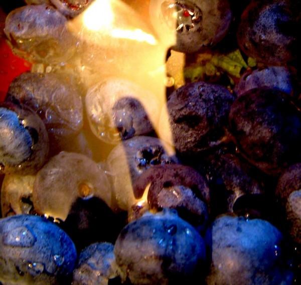 alien in blueberries